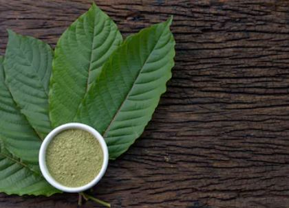 Why Use Green Maly Kratom